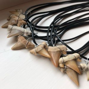 Jewelry - Real Shark Tooth Leather Choker/Necklace